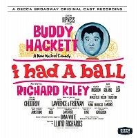 Různí interpreti – I Had A Ball