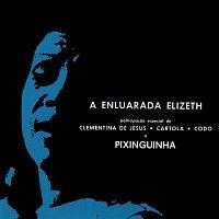Elizeth Cardoso – A Enluarada Elizeth