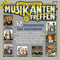 Různí interpreti – Das grosze Musikantentreffen Folge 19