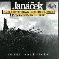 Josef Páleníček – Janáček: Po zarostlém chodníčku