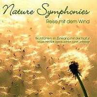 Dave Miller – Nature Symphonies: Reise mit dem Wind