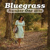 Různí interpreti – Bluegrass Number One Hits