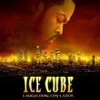 Přední strana obalu CD Laugh Now, Cry Later