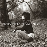 Vienna Teng – Dreaming Through The Noise