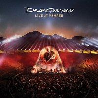 Přední strana obalu CD Live At Pompeii