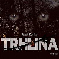 Josef Kaluža, Norbert Lichý, David Viktora – Trhlina (MP3-CD)