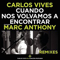 Carlos Vives, Marc Anthony – Cuando Nos Volvamos a Encontrar - Remixes