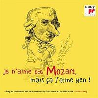 Various  Artists – Je n'aime pas Mozart, mais ca j'aime bien !