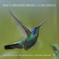 Orchestra of the Antipodes, Antony Walker – Bach: Brandenburg Concertos