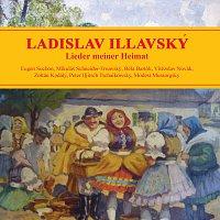 Ladislav Illavský, Wolfgang Rot, Reinhard Schmidt, Robert Schollum, Josef Bock – Ladislav Illavský - Lieder meiner Heimat