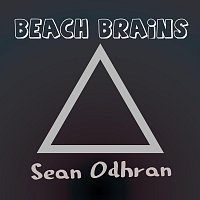 Sean Odhran – Beach Brains