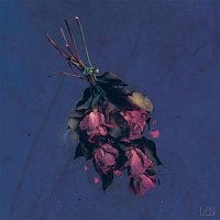 1, N – A Bloom At Midnight