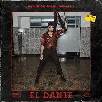 Dante Spinetta – Perdidos en el Paraíso