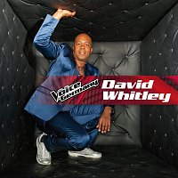 David Whitley – When Love Takes Over [From The Voice Of Germany]