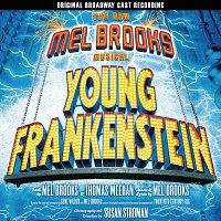 Přední strana obalu CD Young Frankenstein / OST