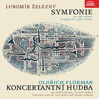 Přední strana obalu CD Železný: Symfonie pro malý orchestr - Flosman: Koncertantní hudba pro dechový kvintet a komorní orchestr