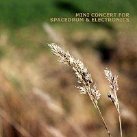 Steve Bender – Spacedrum & Electronics