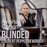 Avishai Cohen – Blinded (Laurent Pepper Rework)