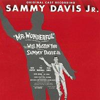 Various Artist – Mr. Wonderful [1956 Broadway Cast Recording]