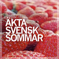Blandade Artister – Akta svensk sommar