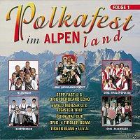 Různí interpreti – Polkafest im Alpenland, Folge 1