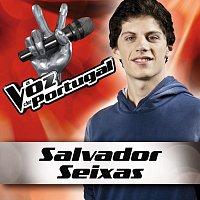 Salvador Seixas – Snow Patrol - Chasing Cars