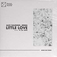 Alex Gaudino, Jerma – Little Love (feat. Lil' Love) [Arno Cost Remix]