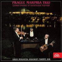 Pražské marimbové trio – Pražské marimbové trio / Rak, Haydn, Mysliveček, Halvorsen, Martinů