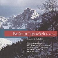 Bostjan Lipovsek, Simfonicni orkester RTV Slovenija, David De Villiers – Rog