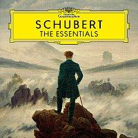 Různí interpreti – Schubert: The Essentials