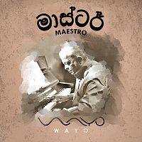WAYO – Maestro