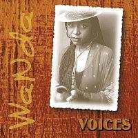 Wanda Baloyi – Voices