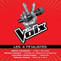Různí interpreti – La Voix: Les 4 Finalistes
