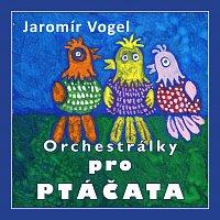 Vogel music orchestra – Orchestrálky pro ptáčata