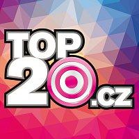 Různí interpreti – Top20.cz 2014/1