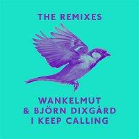 Wankelmut, Bjorn Dixgard – I Keep Calling (Remixes)