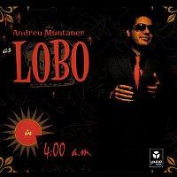 "Andreu Muntaner ""Lobo"" – 4:00 a.m."