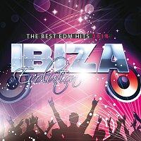 Různí interpreti – Ibiza Evolution