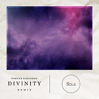 Porter Robinson, Amy Millan – Divinity [filous Remix]