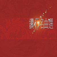 Různí interpreti – Zuan Shi Ming Qu Xuan