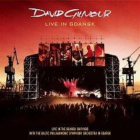 David Gilmour – Live In Gdansk