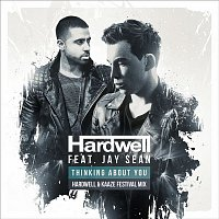 Hardwell, Jay Sean – Thinking About You (Hardwell & Kaaze Festival Mix)