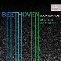 Přední strana obalu CD Beethoven: Sonáty pro housle a klavír - komplet