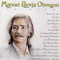 Various Artists.. – Manuel Pareja Obregoni Tributo