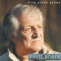 Pavel Bobek – Jsem pouhy znamy