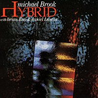 Michael Brook – Hybrid