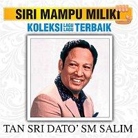 SM Salim – Koleksi Lagu Lagu Terbaik