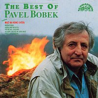The best of Pavel Bobek