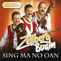 Přední strana obalu CD Zellberg Buam / Sing ma no oan