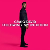 Craig David – Following My Intuition